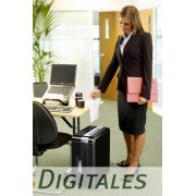 Destructora Fellowes DS-1200Cs, corte en partículas